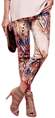 Lisette L Crop Ankle Pants Style 14946 Navaho Stretch Twill Print Inseam 26